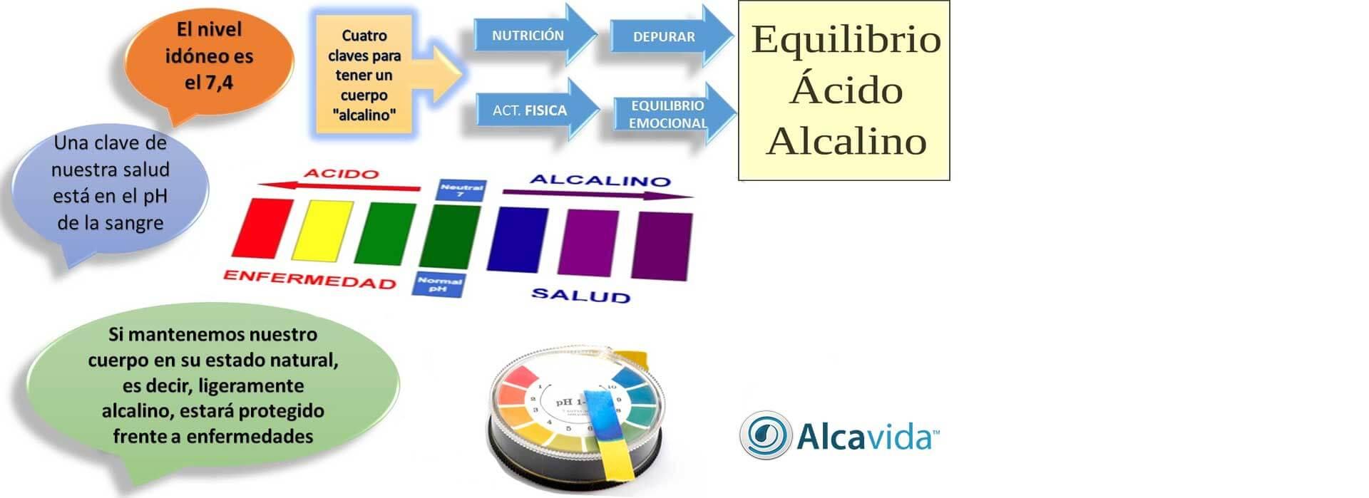 BENEFICIOS DE TENER UN CUERPO ALCALINO